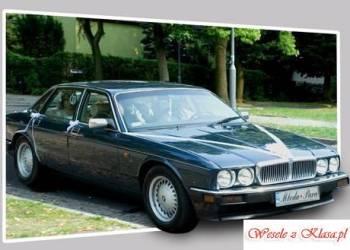 JAGUAREM do Ślubu  styl i elegancja , Samochód, auto do ślubu, limuzyna Kłecko