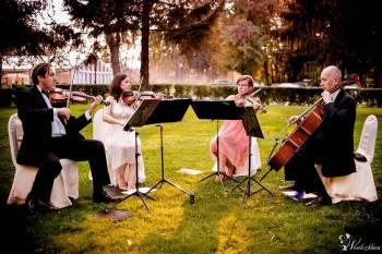 Kwartet smyczkowy Con Forza - kameralna oprawa muzyczna uroczystości, Oprawa muzyczna ślubu Grójec