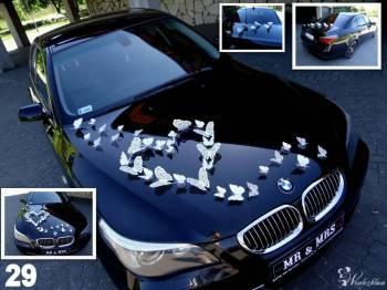 Auto & Motor do ślubu  BMW 5 + 29 dekoracji GRATIS !!! ---autaslubu---, Samochód, auto do ślubu, limuzyna Poddębice