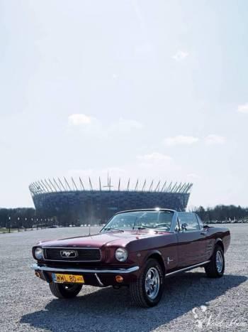 MUSTANG CABRIO 1966r. Wyjątkowy samochód ślubny - Retro, Samochód, auto do ślubu, limuzyna Łomża
