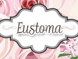 Dekoracje Ślubne Eustoma,  Rzeszów