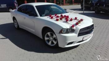 AmCarem Do Ślubu! Piękny Amerykański Dodge Charger, Samochód, auto do ślubu, limuzyna Łęczna