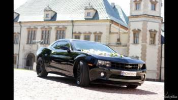 Chevrolet Camaro, Jeep Wrangler, Jeepster Commando  SPRAWDŹ!, Samochód, auto do ślubu, limuzyna Końskie