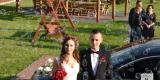 Markowy Wodzirej - Ciężki Dym, Pirotechnika, napis LOVE, Dj + Wodzirej, Śliwice - zdjęcie 4