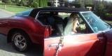 CLASSIC CARS...Cadillac,Dodge,Riviera,SEC!!!, Jasło - zdjęcie 6