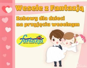 Zabawy i animacje dla dzieci na przyjęciu weselnym, Animatorzy dla dzieci Narol