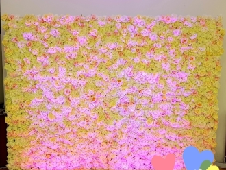 Ścianka Kwiatowa Flower Wall Jasna, Ecru, Pudrowy Róż Wynajem,  Białystok