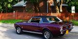Ford Mustang coupe Sports Sprint z najlepszego rocznika 1967, Krosno - zdjęcie 4