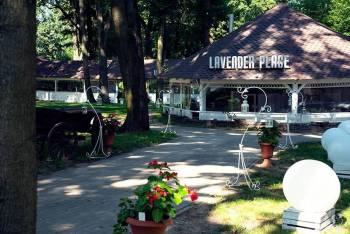 Lavender *Place*, Sale weselne Mława