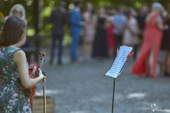 Skrzypce - oprawa muzyczna ślubów i innych uroczystości, Oprawa muzyczna ślubu Wrocław