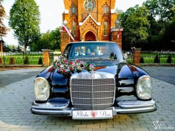 Auto do ślubu! Zabytkowy Mercedes w108 250s S-klasa 1966 rok!, Samochód, auto do ślubu, limuzyna Daleszyce