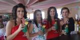 Drink bar Dragon - Hit na weselach, Rzeszów - zdjęcie 3
