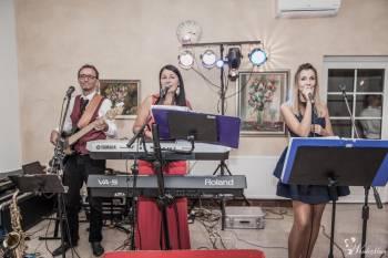 Zespół muzyczny FART, Zespoły weselne Mogilno