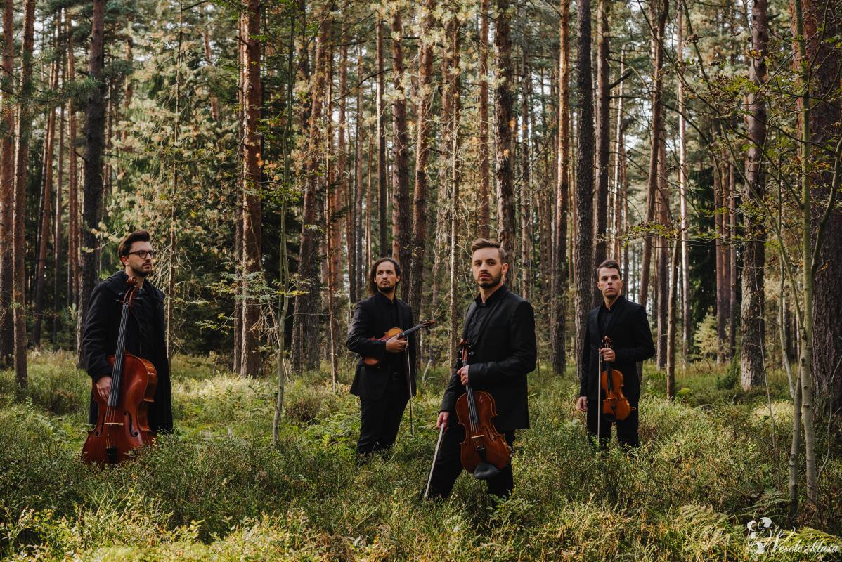 Kwartet smyczkowy Dobry Ton, Kraków - zdjęcie 1