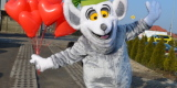 Animacje dla dzieci podczas wesela / animator /wata/ ELMO Urodzinki, Szczecin - zdjęcie 3