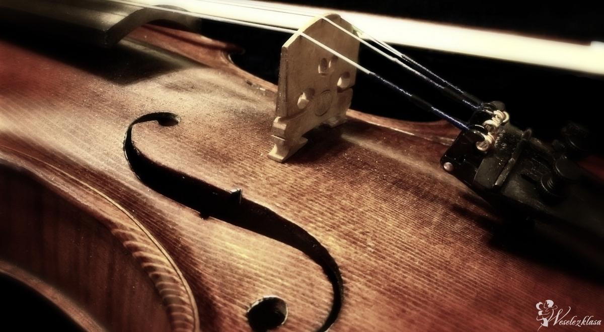 Skrzypek, skrzypce; oprawa muzyczna - Wojciech Koziński, Trzebinia - zdjęcie 1