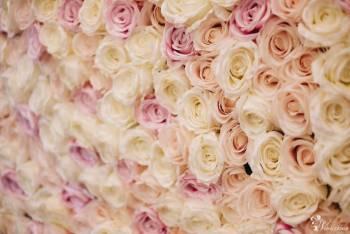 Ścianka kwiatowa na wesele, Dekoracje ślubne Hajnówka