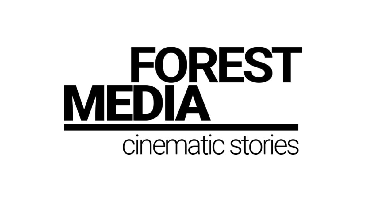 forest media | Filmy ślubne dla wymagających, Katowice - zdjęcie 1