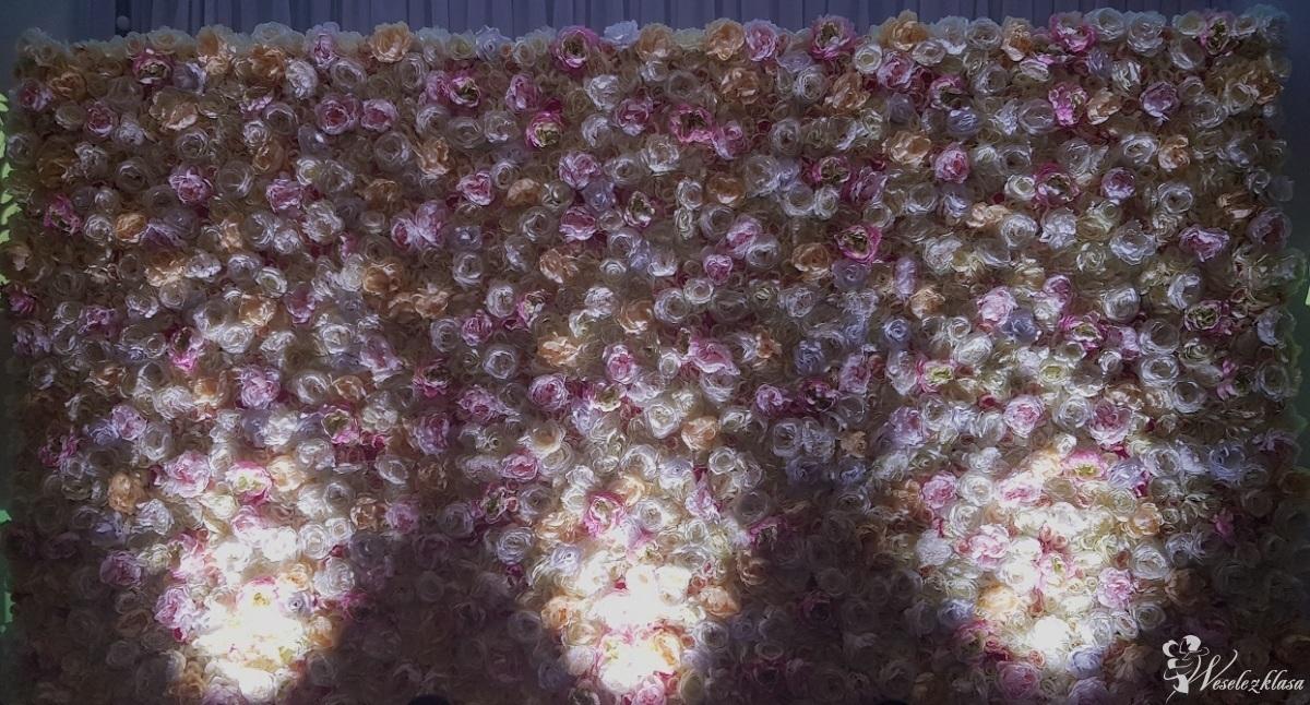 Ścianka tło na wesele, za parę młodą, Radom - zdjęcie 1