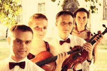 Muzyka na ślub,kwartet smyczkowy, skrzypce, harfa, wokalistka, Oprawa muzyczna ślubu Złotoryja