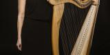 Skrzypce i harfa na wymarzony ślub, Warszawa - zdjęcie 2