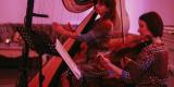 Skrzypce i harfa na wymarzony ślub, Warszawa - zdjęcie 6