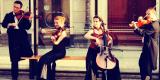 Muzyka na ślub,kwartet smyczkowy, skrzypce, harfa, wokalistka, Wrocław - zdjęcie 6
