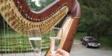 Muzyka na ślub,kwartet smyczkowy, skrzypce, harfa, wokalistka, Wrocław - zdjęcie 2