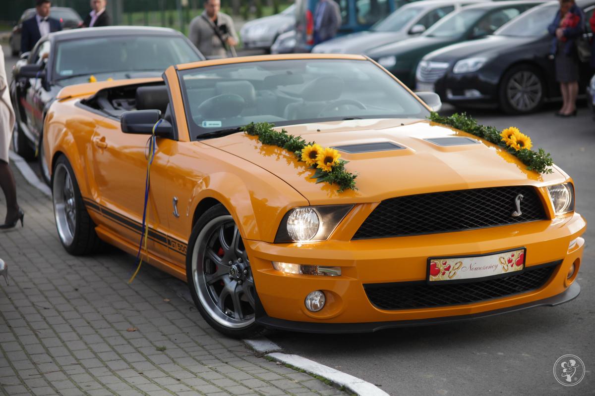 Mustang Gt Shelby convertible, Fiat 125p, Piotrków Trybunalski - zdjęcie 1