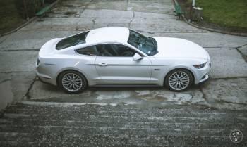 Piękne samochody sportowe - Mustang - Porsche -Camaro-Tesla - RENTARS, Samochód, auto do ślubu, limuzyna Wrocław