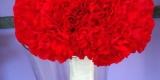 Gratka Kwiaciarnia , Jelenia Góra - zdjęcie 5