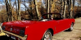 Ford Mustang Cabrio 1965r oraz 1967r & Coupe 1966 r & Fastback 1967r, Bochnia - zdjęcie 4