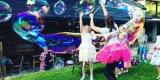 Animacje dla dzieci, animatorki, animacje weselne, urodzinowe, pikniki, Bielsko-Biała - zdjęcie 4