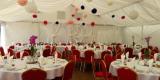 Hale namiotowe namioty wesele ślub stoły krzesła wynajem wypozyczalnia, Rzeszów - zdjęcie 2