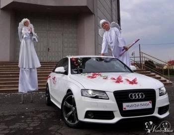 COŚ PIĘKNEGO Dekoracje Kościołów, Sal, Bukiety, PAKIETY 1500 dekoracji, Dekoracje ślubne Gliwice