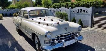 Auto do Ślubu - Cadillac, Samochód, auto do ślubu, limuzyna Kostrzyn nad Odrą