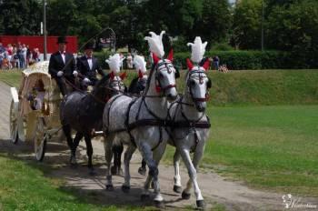 Końmi do ślubu. Zapraszamy serdecznie!  :-), Bryczka do ślubu Brąszewice