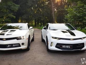 Camaro 2014 - *Biała* Perła oraz Camaro 2016RS - Prowadź Sam!,  Nowy Sącz