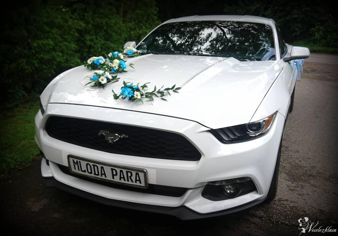 FORD MUSTANG auto do ślubu wynajem wesele 3.7l WOLNE TERMIN NA TEN ROK, Zator - zdjęcie 1