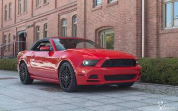 Ford Mustang Cabrio - Nowy - NAJTANIEJ - ślub komunia rozwód imprezy, Samochód, auto do ślubu, limuzyna Brusy