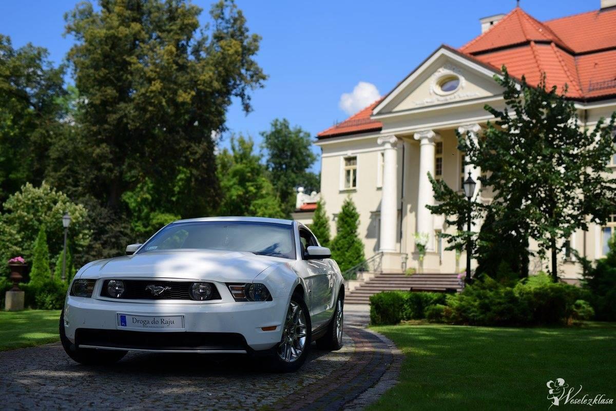 Vesilia -  Ford Mustang - Prowadź legendę, Zagórów - zdjęcie 1