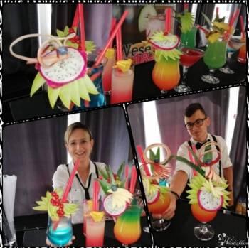 Coctail Bar Paula drink  bar Barmani, Barman na wesele Rypin