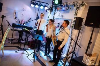 Goldi Band, Zespoły weselne Mrocza