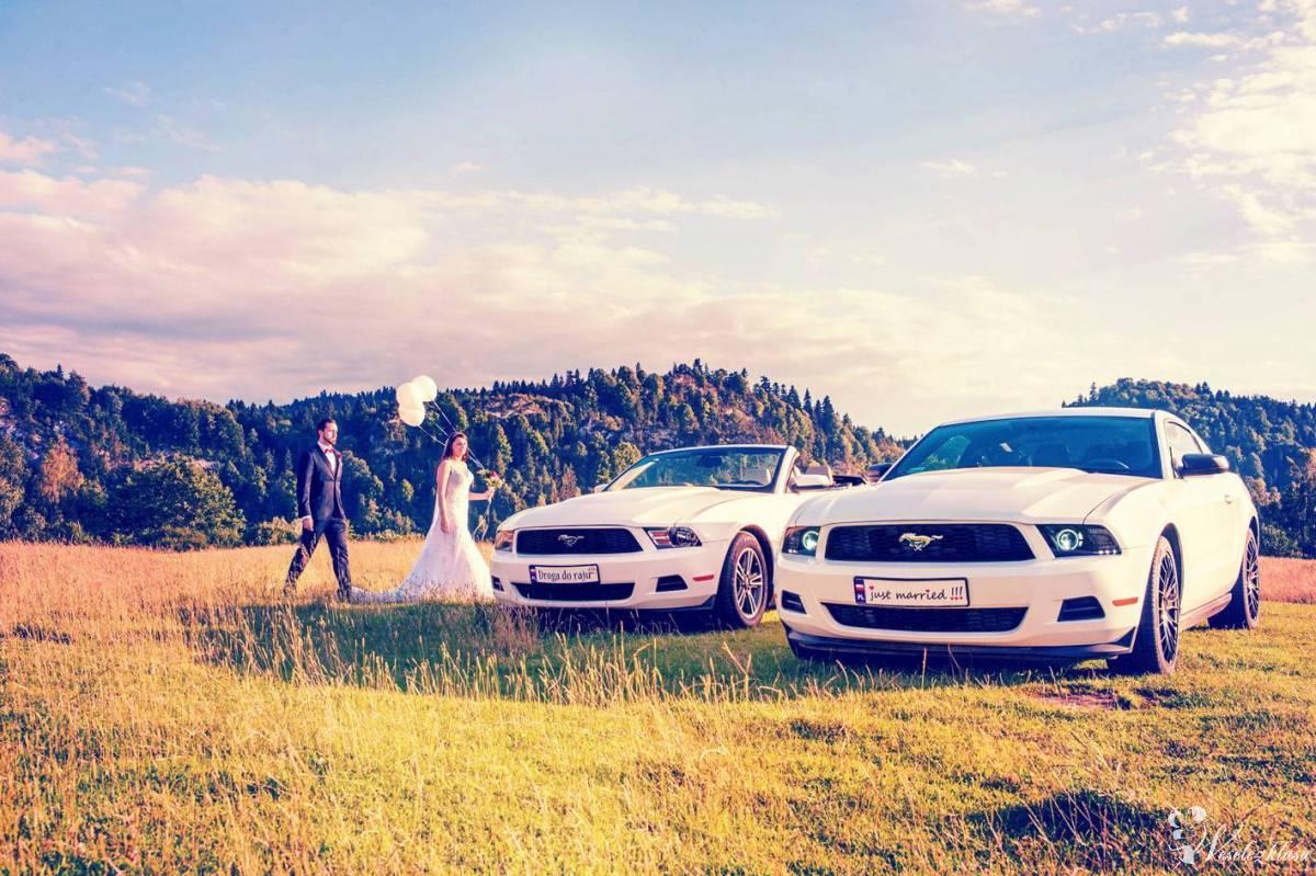 Mustang COUPE i CABRIO, którego z koników poprowadzisz w dniu ślubu:), Nowy Sącz - zdjęcie 1