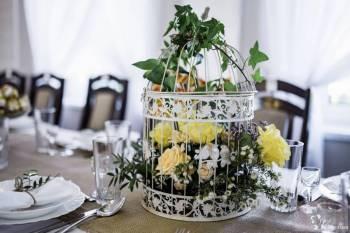 Jedyne w Polsce drzewo kwiatowe Visteria oraz inne dekoracje ślubne!, Dekoracje ślubne Ropczyce