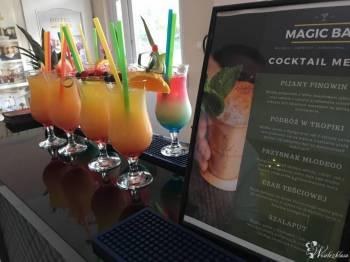 Magic Bar - profesjonalni barmani na Twoje wesele | Bar Mobilny, Barman na wesele Chełmno
