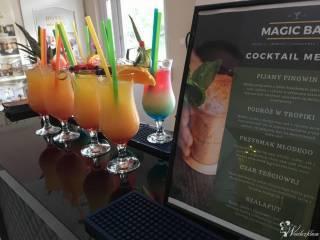 Magic Bar - profesjonalni barmani na Twoje wesele   Bar Mobilny,  Toruń