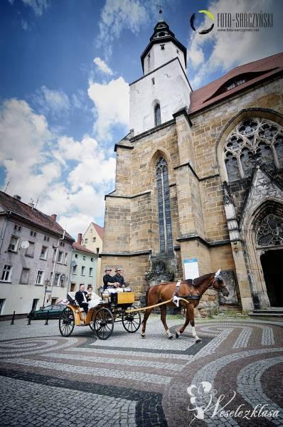 Bryczka do ślubu bryczka, Legnica - zdjęcie 1