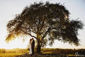 JULIA WIEJKSZNAR FOTOGRAF, Fotograf ślubny, fotografia ślubna Zator