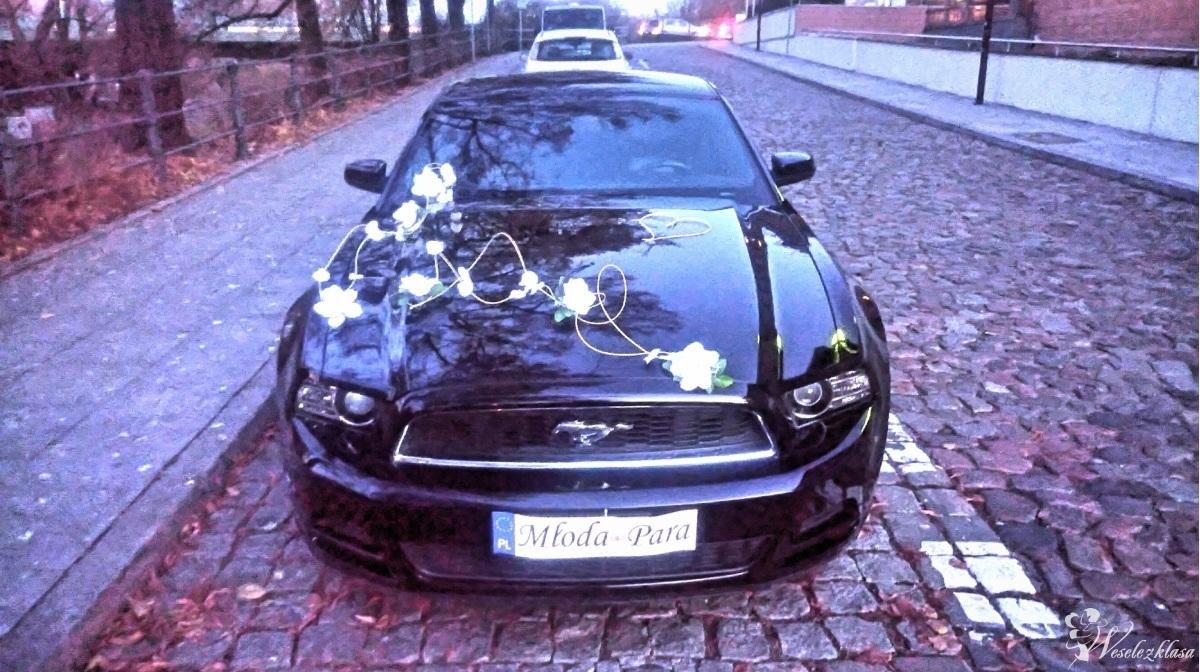 Mustang elastyczna oferta, sam prowadzisz, Bydgoszcz - zdjęcie 1